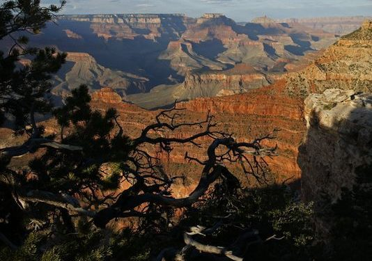 U.S. loses ground as tourist destination, new report says