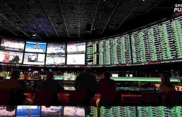 What sports betting ruling means for gamblers